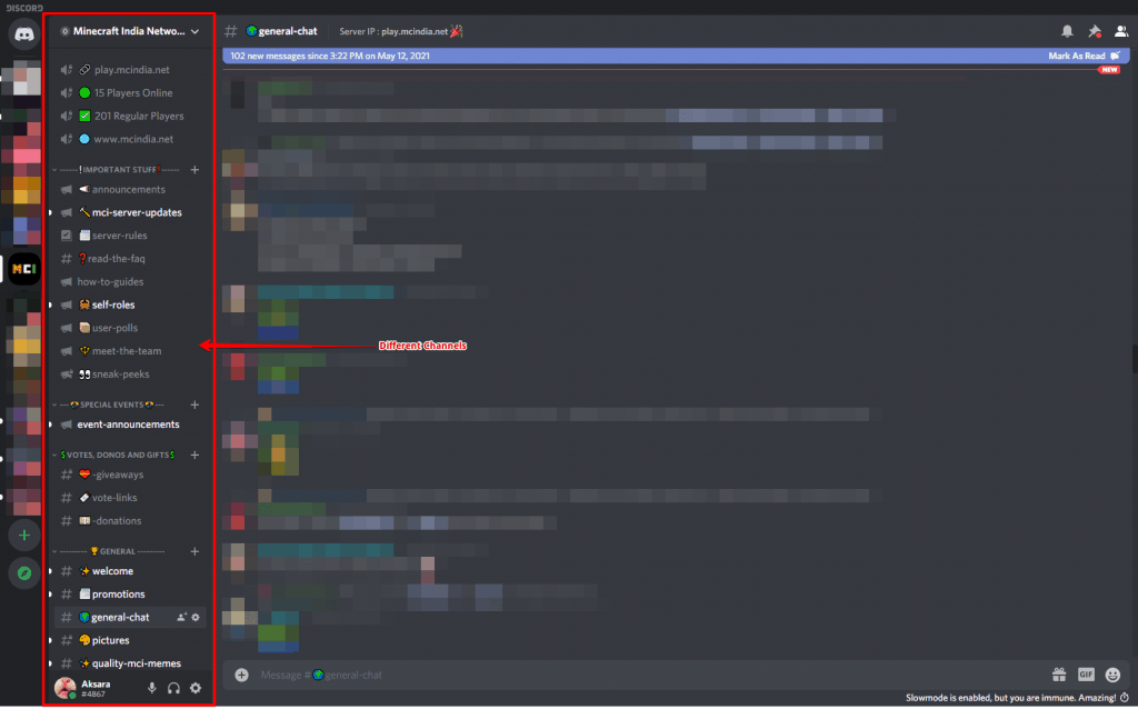 Discord Organization And Roles